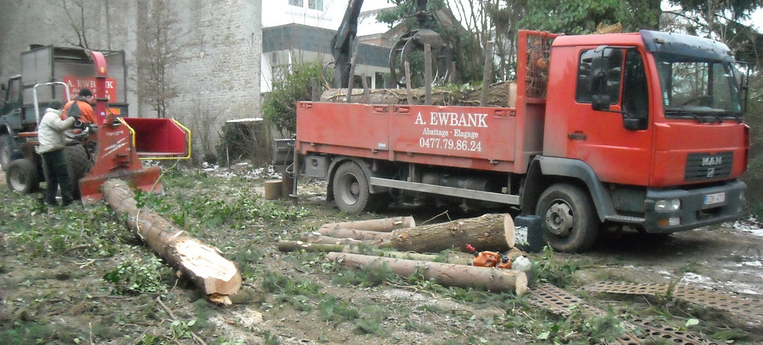 travaux d'abattage